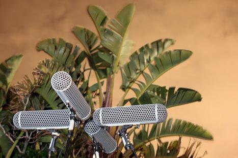 IRT Cross = Soundscape | DESARTSONNANTS - CRÉATION SONORE ET ENVIRONNEMENT - ENVIRONMENTAL SOUND ART - PAYSAGES ET ECOLOGIE SONORE | Scoop.it