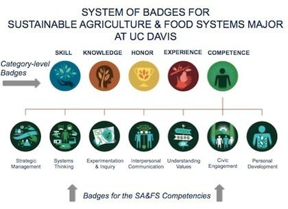 Using Badges to Quantify Learning at UC Davis - Getting Smart by EdCetera Staff - badging, higher ed, learning, learning outcomes | Ensino em Português | Scoop.it