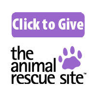 The Animal Rescue Site | Animal Rescue and Animal Rights | Scoop.it