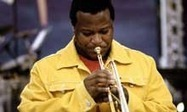 Wallace Roney: Home | Jazz from WNMC | Scoop.it