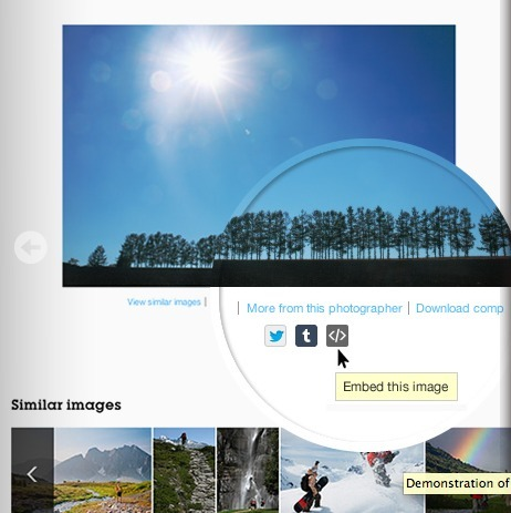 Find Images for Blogs & Social Media with Embed | Getty Images | Visual Design and Presentation in Higher Edcuation | Scoop.it