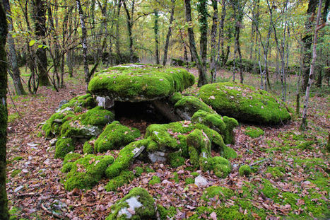 Les dolmens autour de Varaire | Fredorando | Scoop.it