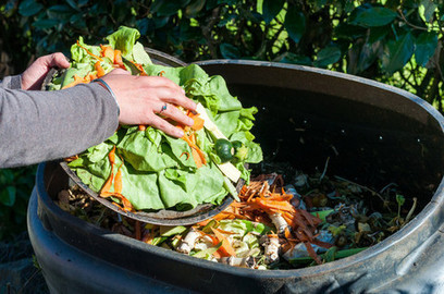 Waste food could be the next thing in sustainable cosmetic ingredients | Anaerobic Digestion | Scoop.it