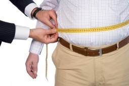 L'obésité, bientôt un handicap? - PIEUVRE.CA | obésité | Scoop.it