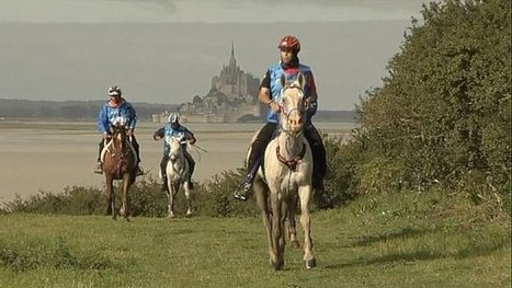 JEM 2014 : le Mont-Saint-Michel, décor somptueux pour l'épreuve d'endurance - France 3 Basse-Normandie   JEM 2014 Normandie   Scoop.it