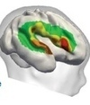 Babies' brains may be tuned to language before birth | Dialogue and Learning | Scoop.it