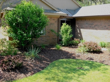 Spring lawn maintenance tips for Coastal South Carolina | Amazing Blades Landscaping | Scoop.it