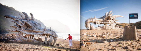 Giant Dragon Skull Spotted On British Beach | Psychology of Consumer Behaviour | Scoop.it