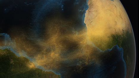 CLIMATE CHANGE: How Does Saharan Dust Feed Amazon's Plants?   > Environmental   Scoop.it