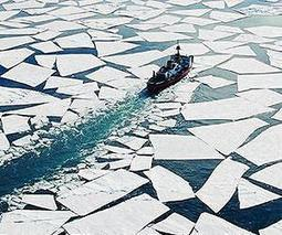 Stowaways threaten fisheries in the Arctic | Sustain Our Earth | Scoop.it