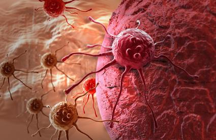 Esta asombrosa planta es hasta 100 veces más efectiva que la quimioterapia | PIENSA en VERDE | Scoop.it