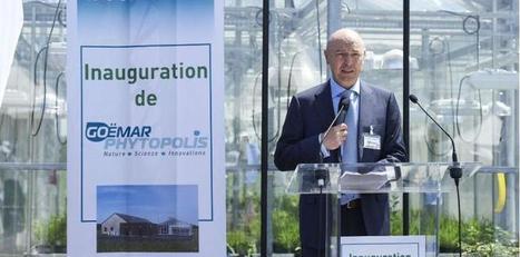 Technologies marines : Goëmar soigne les plantes avec… des algues - La Tribune.fr   Biocontrole   Scoop.it