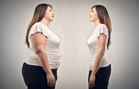 Des bactéries pour combattre l'obésité?   Planète Paléo   Scoop.it