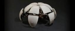 La maestría en el diseño de robots globulares hexápodos | VIM | Scoop.it