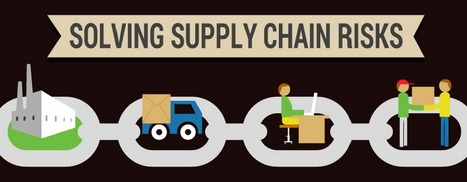 Infographic: Solving Supply Chain Risks | Chief Supply Chain Officer | Information and Insights from Halo Business Intelligence | Scoop.it