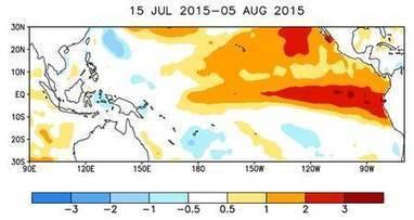 Réchauffement : un El Niño inhabituel et des records de chaleur en 2015 #climate #France #Paris | Messenger for mother Earth | Scoop.it
