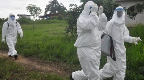 Ebola crisis: Liberia confirms fresh cases | Virology News | Scoop.it