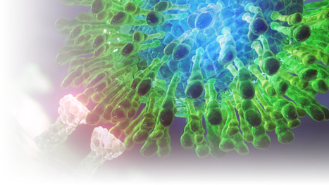 Polygon Medical Animation - HCV Illustration | 3D Medical Illustrations | Scoop.it