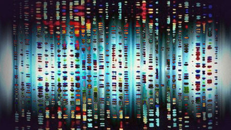 """Pandora's """"Music Genome Project"""" explores the cold hard facts of how we ... - Boing Boing 