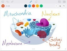 Educational Technology and Mobile Learning: Some Great Apps to Turn your iPad Into An Interactive Whiteboard | Cool School Ideas | Scoop.it