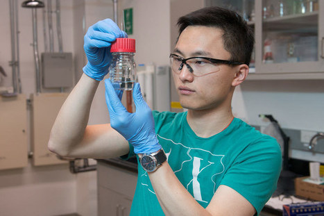 Single-catalyst water splitter from Stanford produces clean-burning hydrogen 24/7 | Cool Future Technologies | Scoop.it