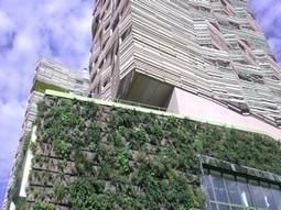 Réservez la date : 12 décembre après-midi, Atelier APC n°15 « «Le végétal au cœur d'un nouveau modèle urbain »   Climat   Scoop.it