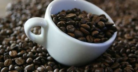 Kenyan Coffee Crop Seen Hurt If Cold Weather Holds, Farmers Say | ESM Magazine | Market information | Scoop.it