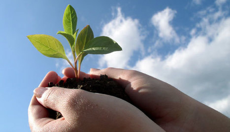 Corporate Philanthropy Programs for Sustainability | Sustainable Development in India | Scoop.it