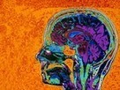 People Can Hallucinate Color at Will   Interesting Psychology and Neuroscience Facts   Scoop.it