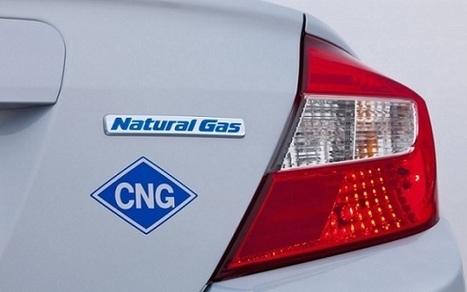 Future of Natural Gas In India - | India Economics | Scoop.it