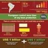 Amazon Deforestation: Issue Study