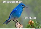 The complete guide to creating compelling marketing tweets | B2B Marketing and PR | Scoop.it