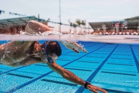 The 4 Phases Of The Freestyle Swim Stroke | Tri Junk | Scoop.it
