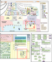 Atlas of Cancer Signalling Network: a systems biology resource for integrative ... - Nature.com | Host Cell & Pathogen Interactions | Scoop.it