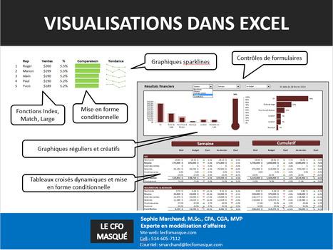 À télécharger: Présentation et vidéo du webinaire sur la visualisation de données – Le CFO masqué | Intelligence d'affaires | Scoop.it