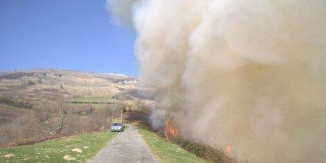 Alerte aux feux | Agriculture en Pyrénées-Atlantiques | Scoop.it