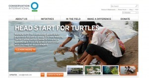 11 Nonprofit Websites Designed for the SocialWeb | Nonprofit websites we like! | Scoop.it