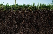 What If the World's Soil Runs Out?   The World Planet   Scoop.it