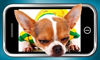 Are smartphones the perfect student pet? | Cool science & tech things | Scoop.it