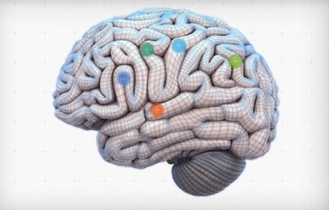 How Your Brain Really Works (Interactive Graphic) | NYL - News YOU Like | Scoop.it