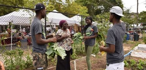Brooklyn farms: Urban agriculture is booming | Vertical Farm - Food Factory | Scoop.it