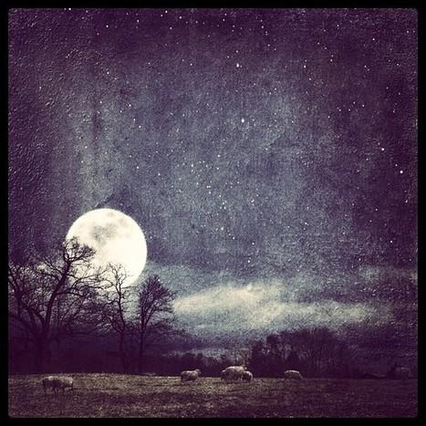 "Pastoral » @maryannreilly » Instagram Profile » Followgram | Buffy Hamilton's Unquiet Commonplace ""Book"" | Scoop.it"