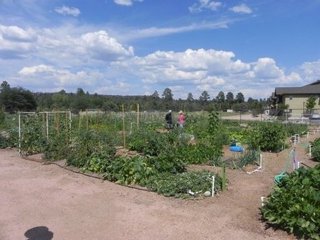 Community Garden opens Saturday | Payson (AZ) Roundup | CALS in the News | Scoop.it