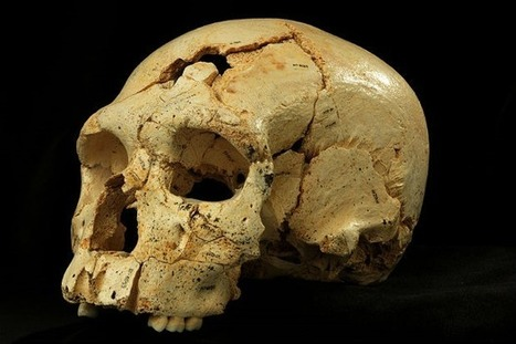 'Pit of Bones' skulls suggest human evolution was like 'Game Of Thrones' - Features | The Star Online | Archaeology News | Scoop.it