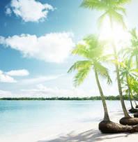 Bahama Shores Neighborhood | St. Petersburg Neighborhoods | Scoop.it