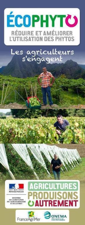Twitter / Min_Agriculture: #ecophyto Un plan qui vise ... | Nourrir la planète... autrement | Scoop.it