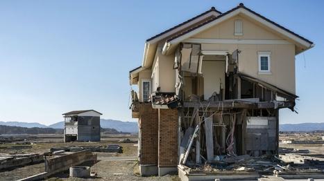 #Fukushima, vidas contaminadas | Anthropocene, Capitalocene, Chthulucene,  staying with the trouble at Fukushima | Scoop.it