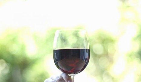 Un verre de vin remplacerait votre séance de running? | Curiosités planétaires | Scoop.it