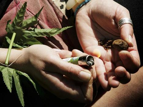 A study has revealed how legalising cannabis in the UK would benefit the economy | Drugs, Crime and Control | Scoop.it