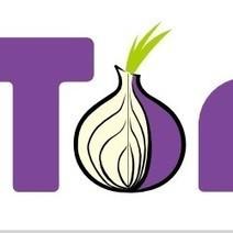 #Cybercriminalité : L'usage de #Tor a explosé de 1 000%   #Security #InfoSec #CyberSecurity #Sécurité #CyberSécurité #CyberDefence   Scoop.it